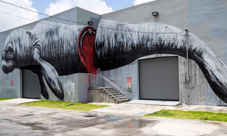 Roa Arte Urbano - Digerible