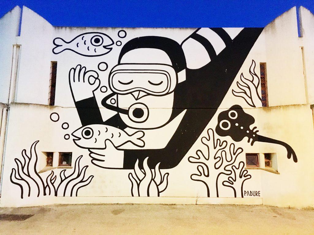 Padure arte urbano en Lagos, Portugal