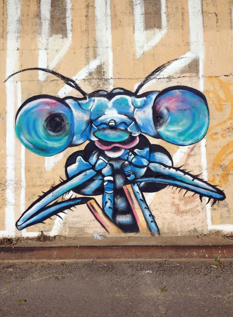 Arte Urbano en Lleida, España