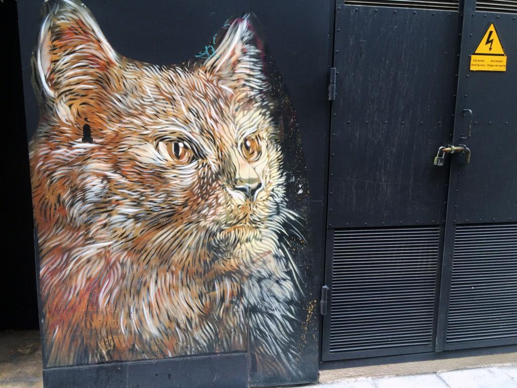 C215 arte urbano en Barcelona