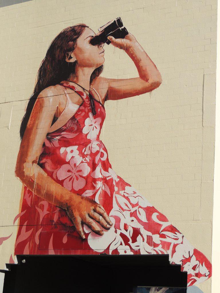 Arte urbano de Fintan Magee en New Zealand