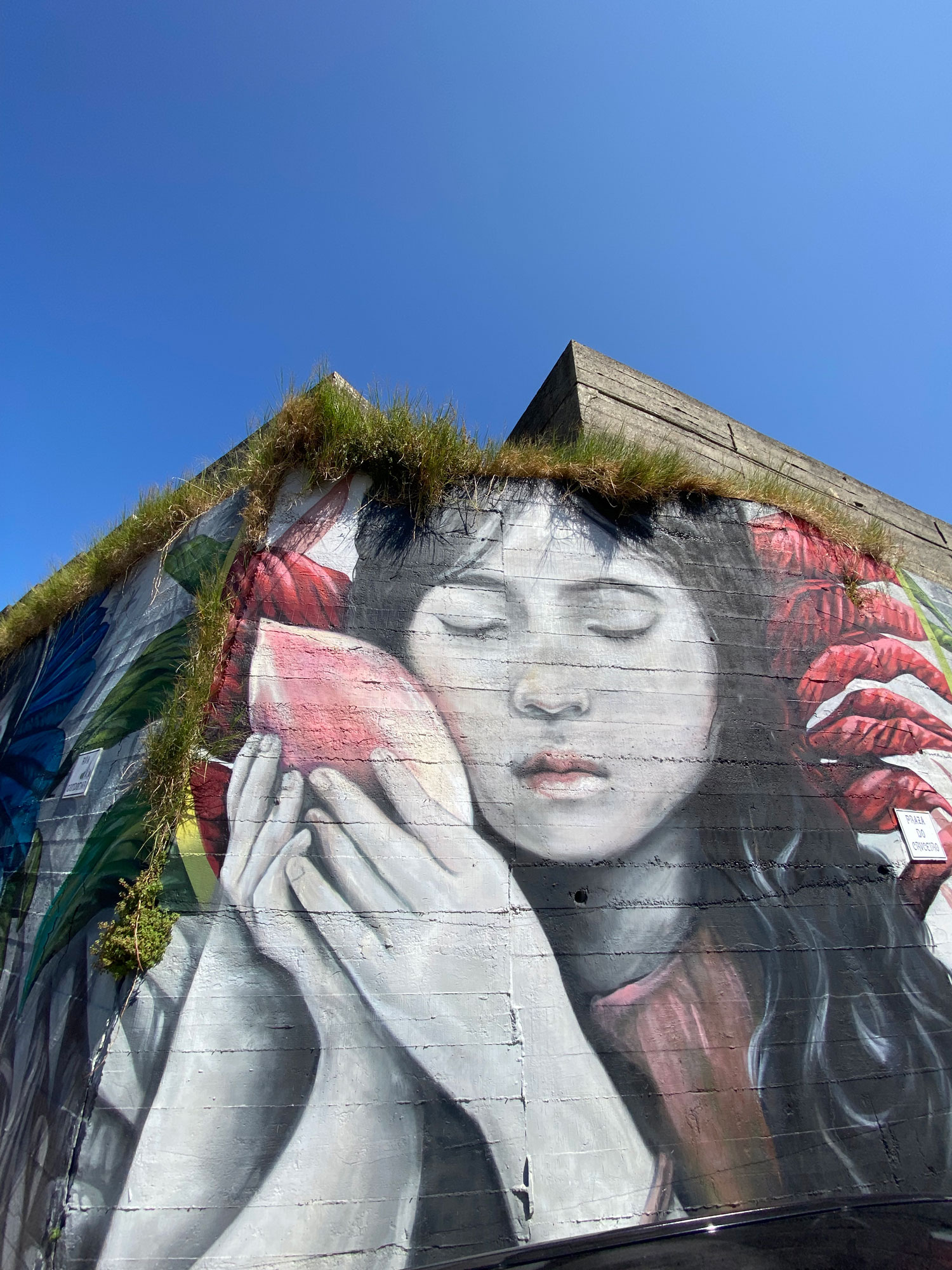 Arte urbano Lula Goce Galicia